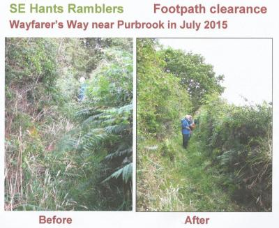 Footpath Clearing